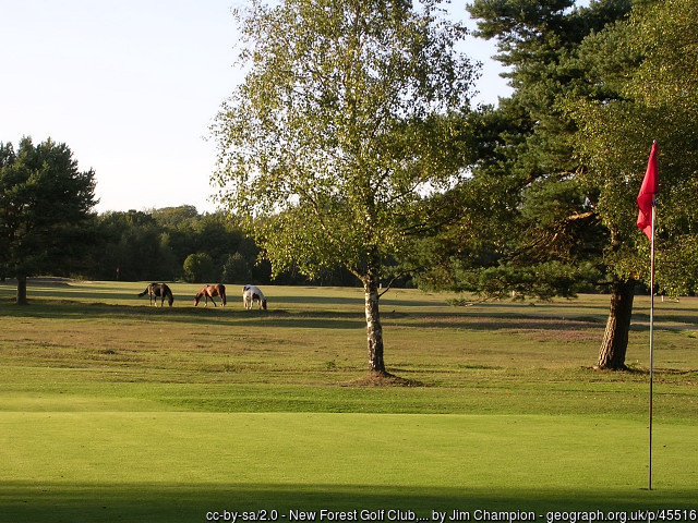 New Forest Golf Course